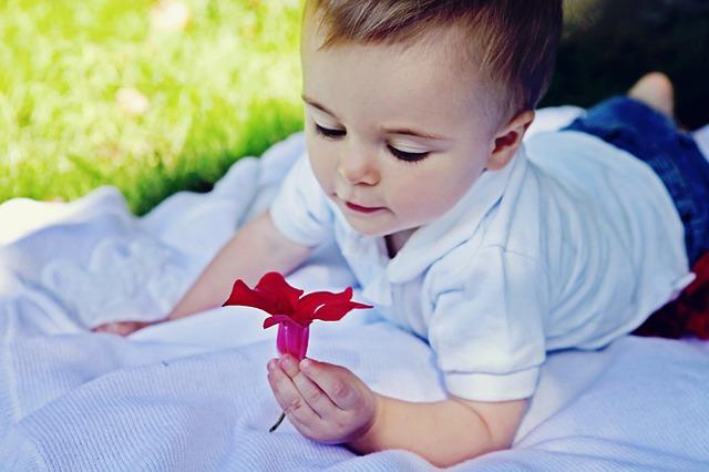 child-baby-inquisitive-flower